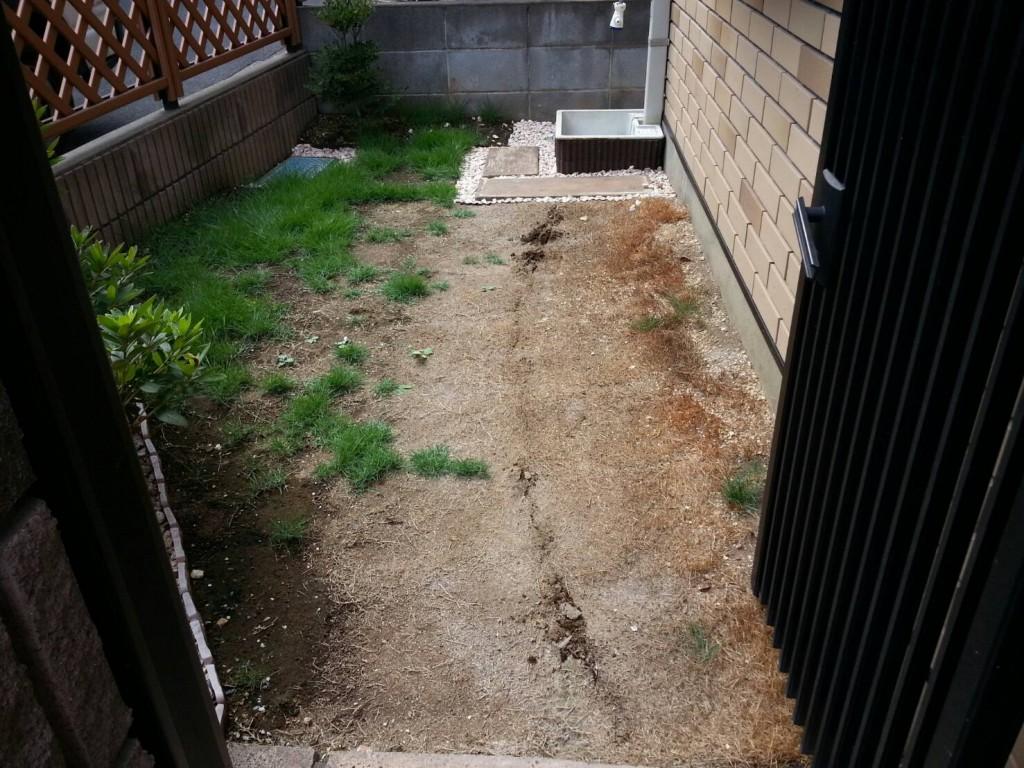 芝生の施工前