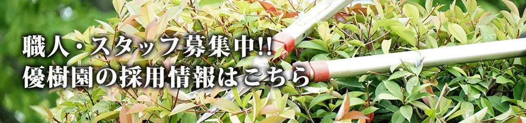 職人・スタッフ募集中!!