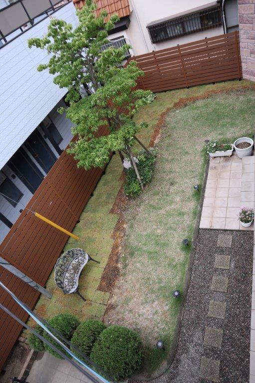 フェンスと植木